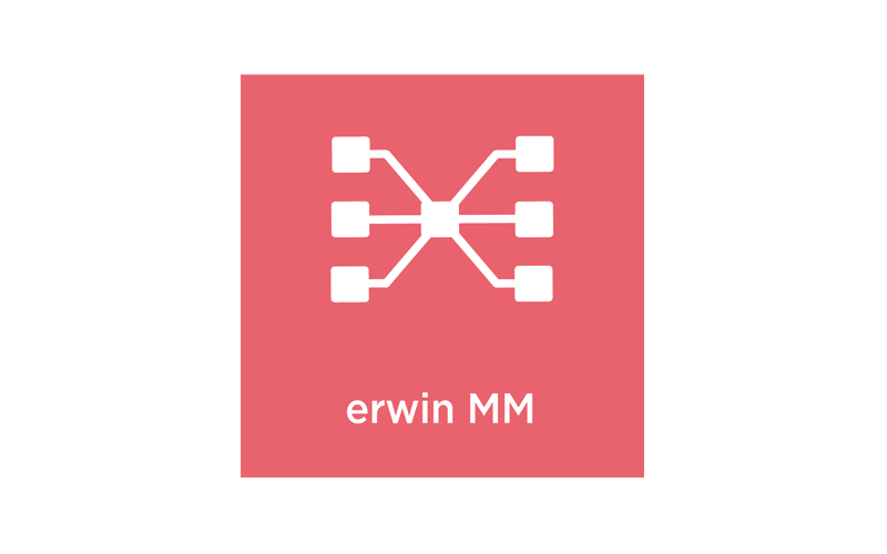 erwin Mapping Manager logo