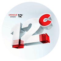 Oracle Database software